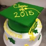 Class of 2015 cake